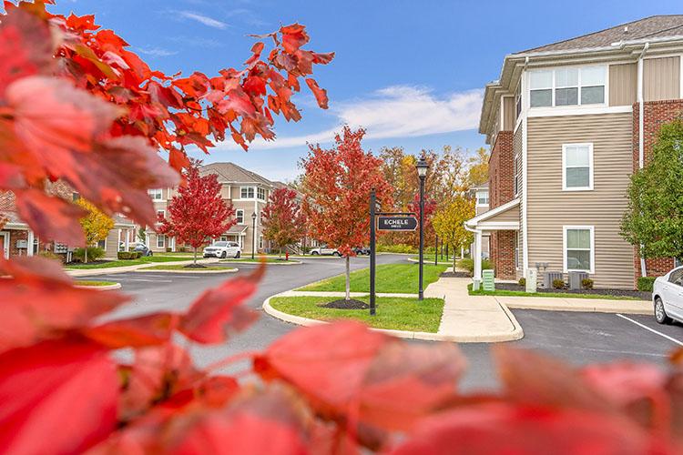 Polaris Place Apartments Echele Drive 3
