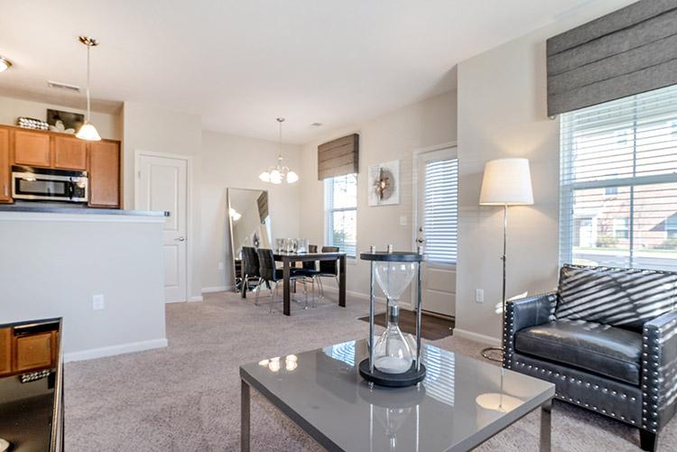 Polaris Place Apartments Unit Living Room 5