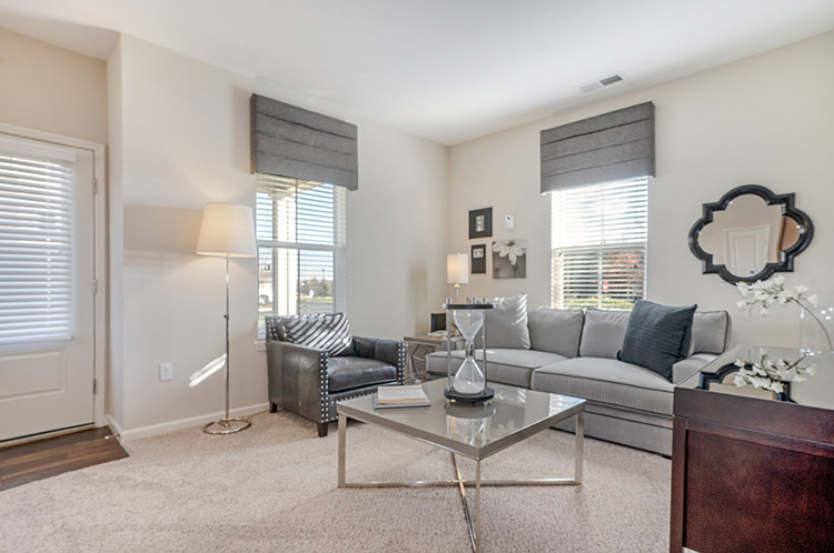 Polaris Place Apartments Unit Living Room 6
