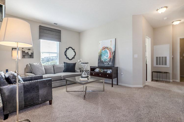 Polaris Place Apartments Unit Living Room 7