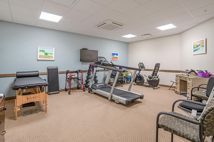 Spring Leaf Place Apartments Gym