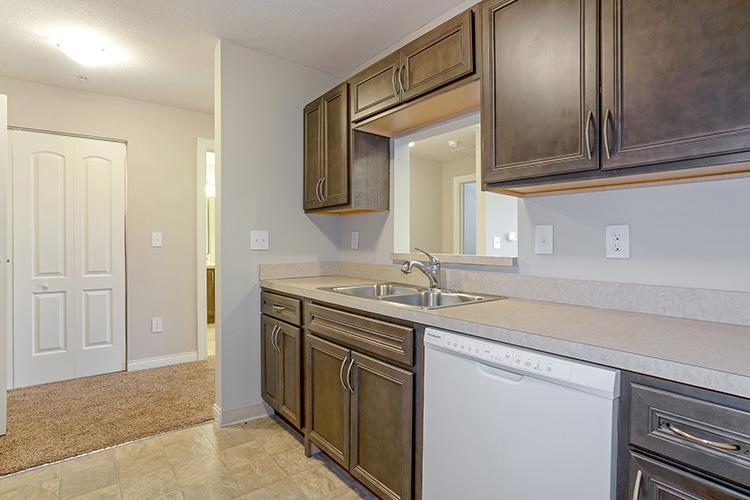 Spring Leaf Place Apartments Unit Kitchen 5