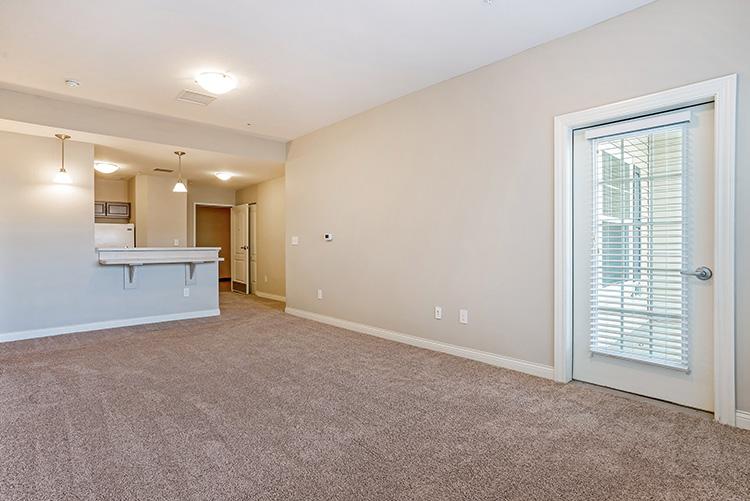 Spring Leaf Place Apartments Unit Living Room