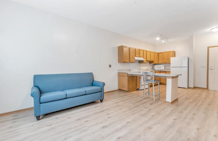 Unit Living Room 3